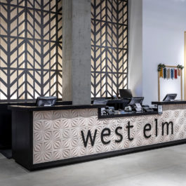 West Elm Store 6in 3D-Cladding Compass-Star Alabaster